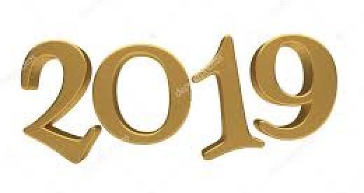 SAYILARLA 2019